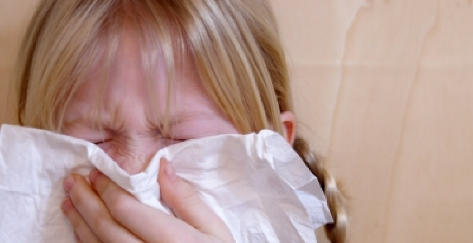 Allergieverträgliche Staubsaugermodelle im Test
