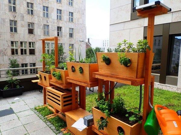Vertikale Kleingärten für Städter
