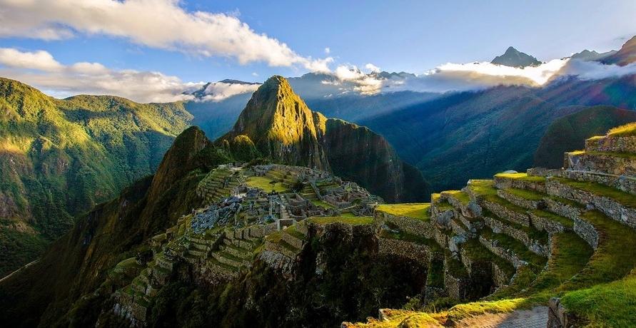 Die Maca Wurzel – Superfood aus Peru