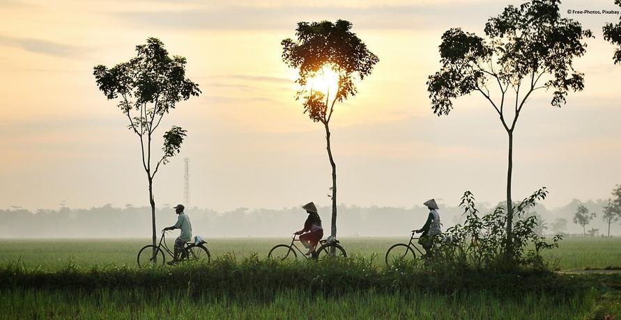 Luftreinigendes Fahrrad bald auf Chinas Straßen unterwegs