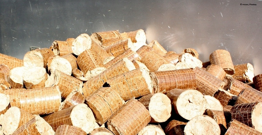 5 gute Gründe für umweltfreundliche Wärme aus Holz
