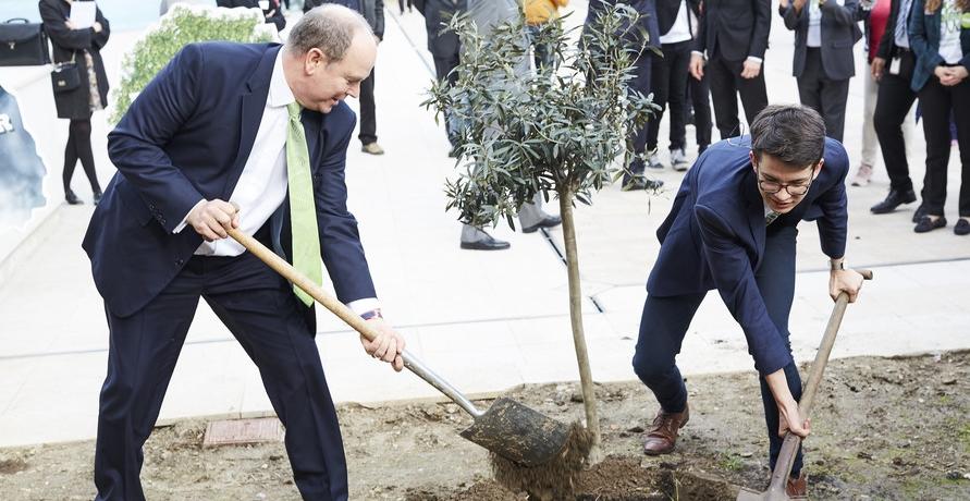 Plant-for-the-Planet: Trillion Tree Campaign erfolgreich gestartet