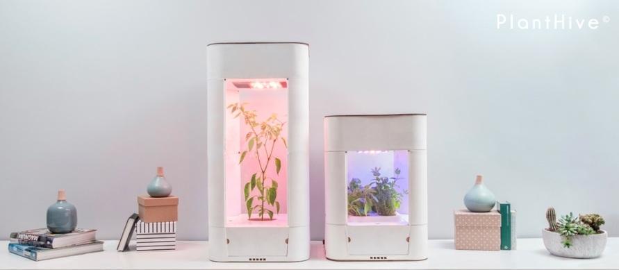 Urban Farming in den eigenen vier Wänden