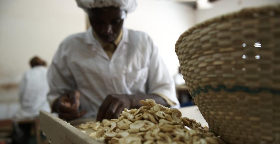 Fair gehandelte Bio-Lebensmittel aus aller Welt