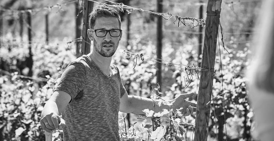 Bio-Weine vom Weingut Rieger