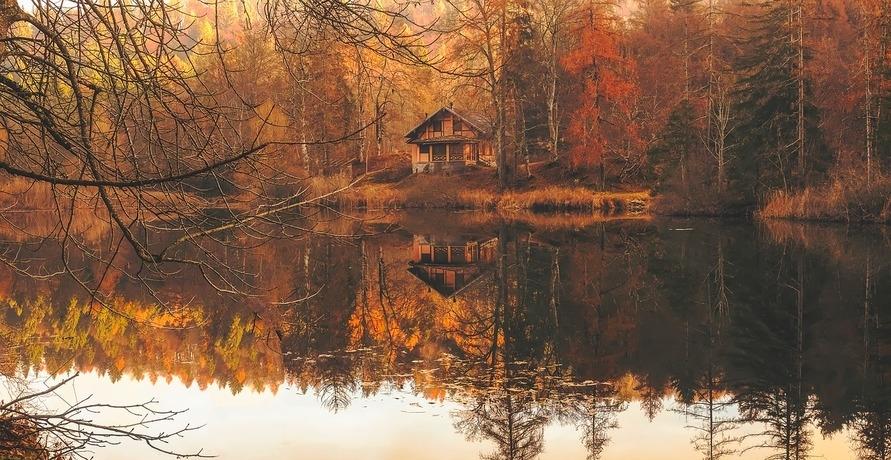 Natur Pur: Naturhäuschen.de bietet Ferienhäuser inmitten der Natur