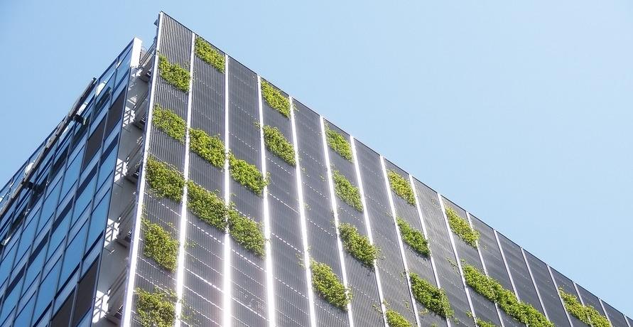 Wie wurde Nachhaltigkeit zum Trend?