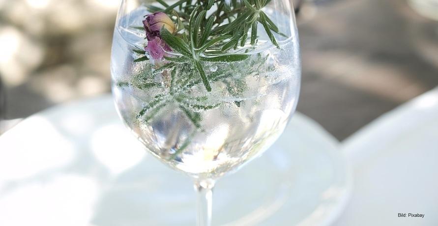 Der große Bio Gin Test