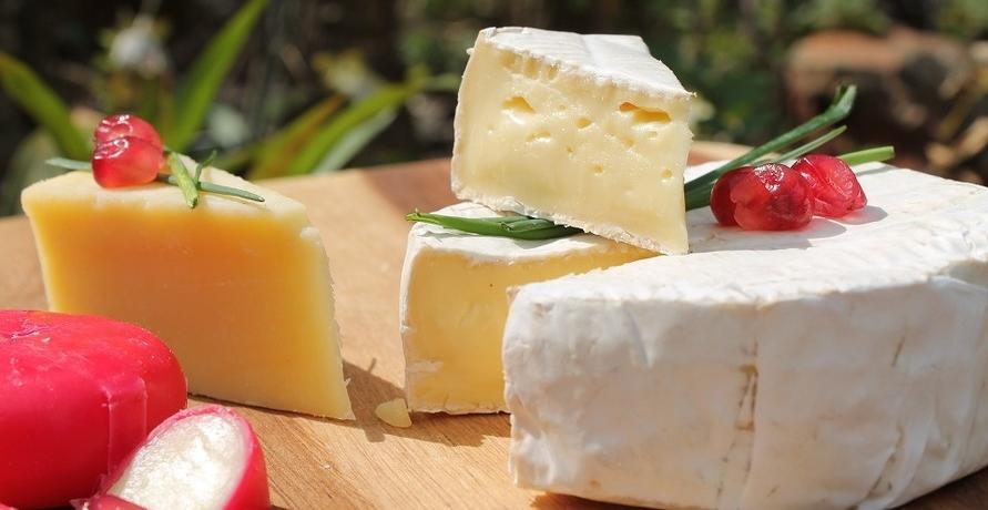 Veganer Käse - nachhaltige Alternativen mit Geschmack