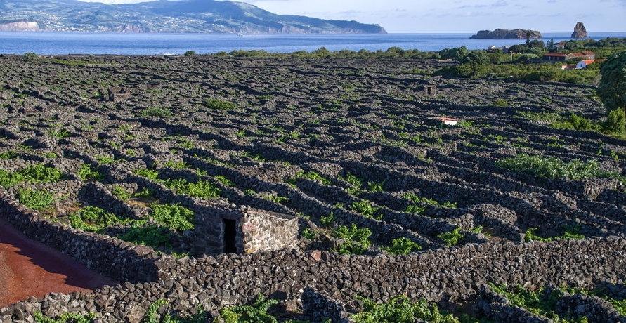 Azoren Reisen - Reiselust und Nachhaltigkeit im Einklang?