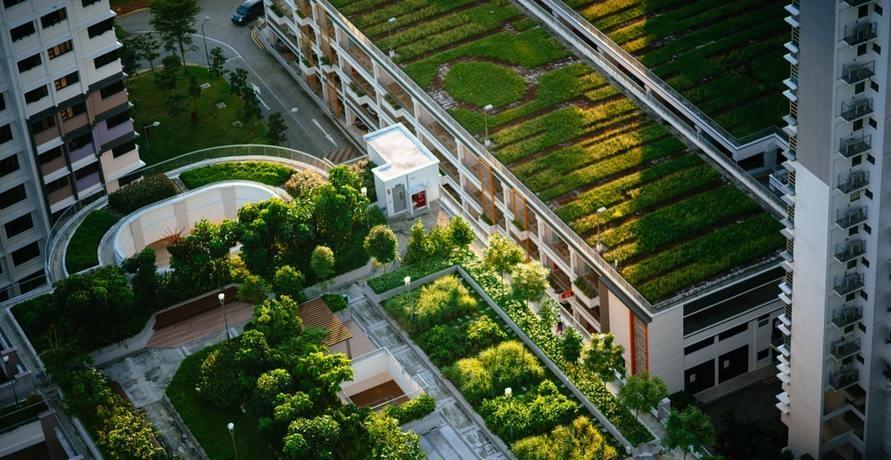 GREEN CITY - Seit 30 Jahren für mehr Klimaschutz