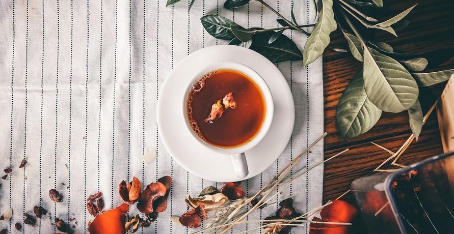 """Loser Tee in Bioqualität: Natürliches Geschmackserlebnis und """"Zero Waste"""""""