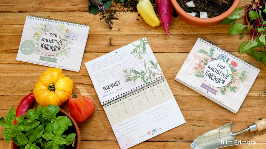 Nachhaltiger-Kalender