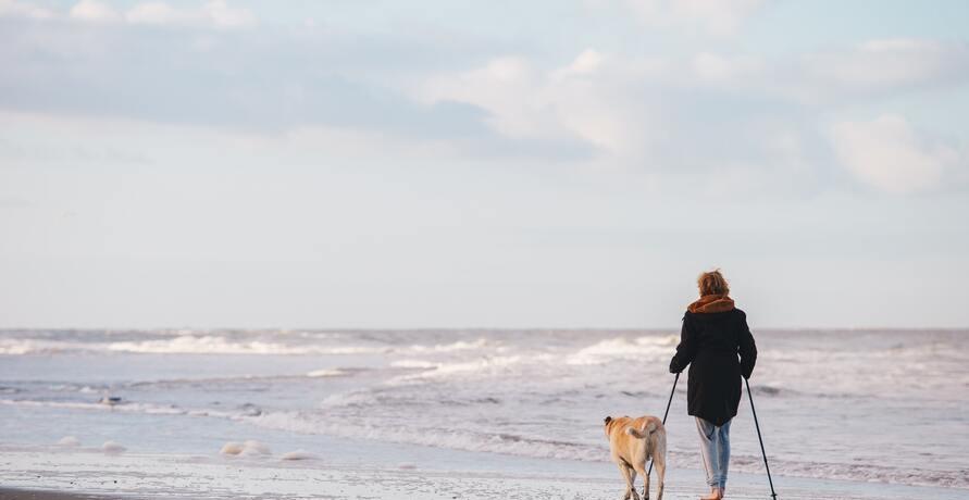 Nachhaltige Nordic Walking Stöcke für Outdoor-Spaziergänge mit Naturerlebnis