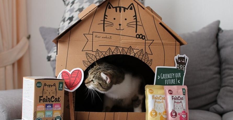 Nachhaltigkeit im Napf: Klimapositives Katzenfutter von Green Petfood im Test