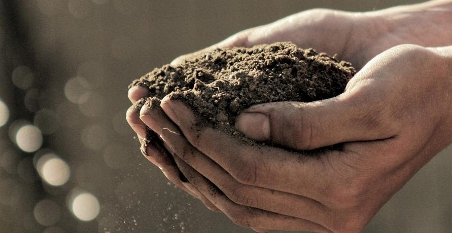 Noch besser als Recyceln: Kompostierbare Alternativen für den Alltag von Compostella
