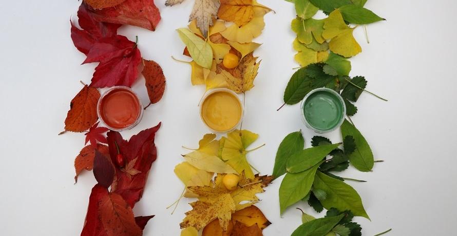 Kneten ohne Bedenken mit Bio-Knetmasse und Bio-Fingerfarben von neoGRÜN