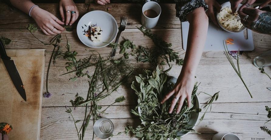 Heilkräuter als biologisches Naturheilmittel? Kräuterkontor klärt auf!