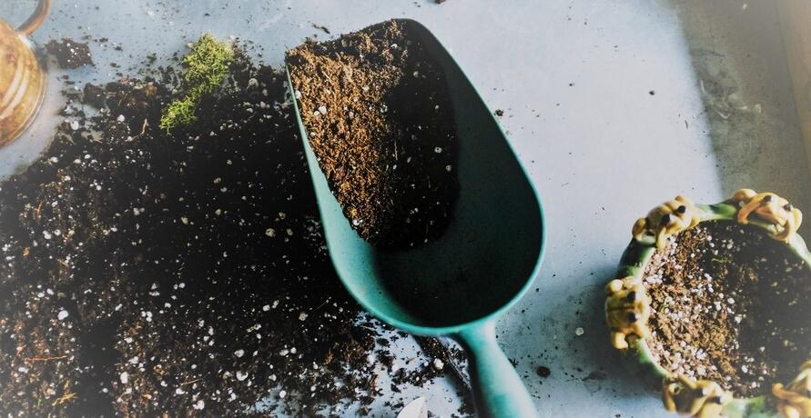Mit den Hochbeeten von Gartenallerei kann jede*r zum Gartenprofi werden