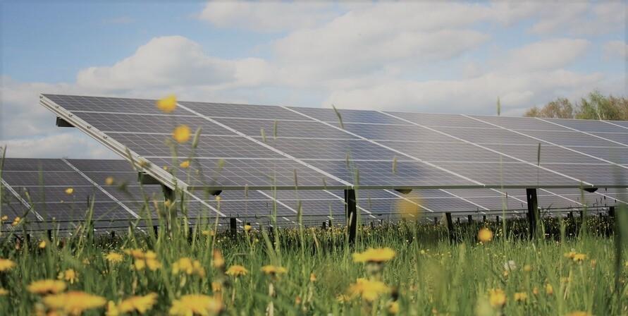 Die Energiewende mitgestalten – Grüne Sachwerte berät dich zu grünen Geldanlagen