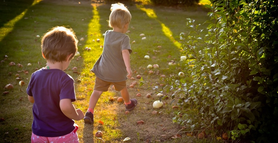 Gesunde Snacks für Kinder zum Mitnehmen