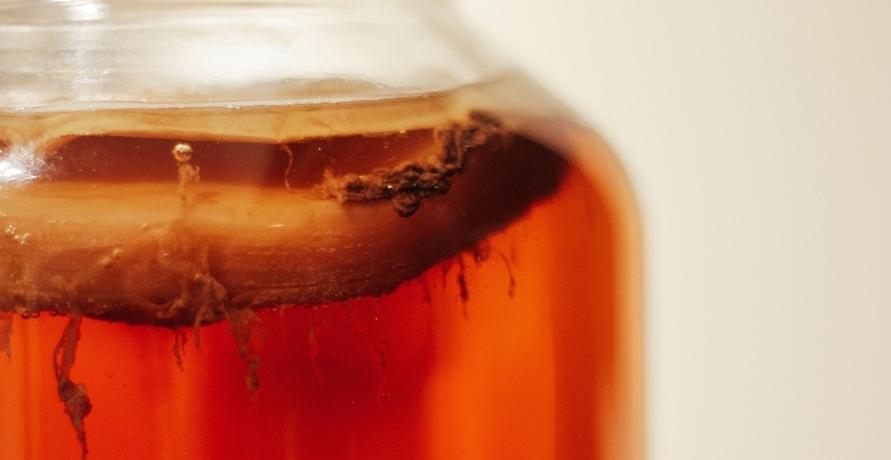 Bakterien als Reinigungshelfer: Probiotische Reiniger für natürliche Sauberkeit