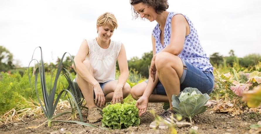 """""""Die Urban Gardening-Bewegung steht erst am Anfang."""""""
