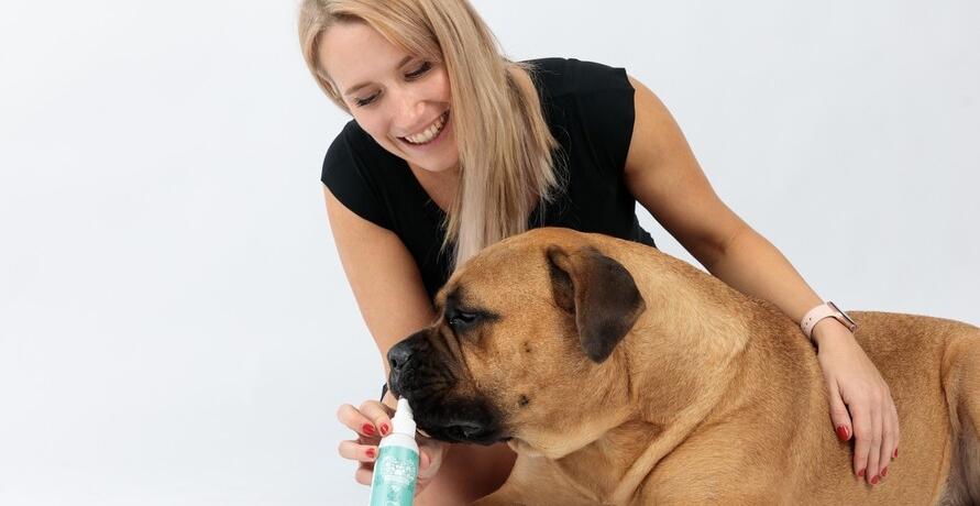 Natürliche Pflege für deinen Hund – entwickelt von Tierliebhaber