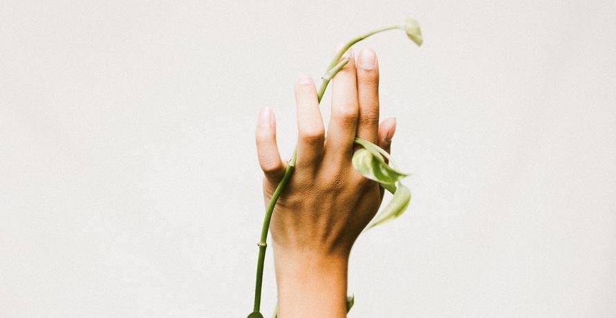 Pfleg dich grün – feste Handcreme aus natürlichen Zutaten