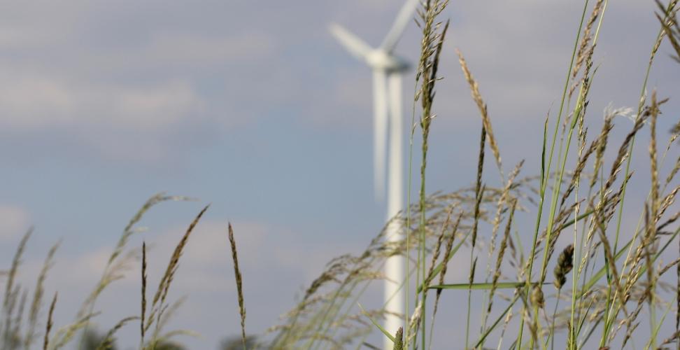 Machnig: Thüringen bleibt bei Windenergie unter seinen Potenzialen