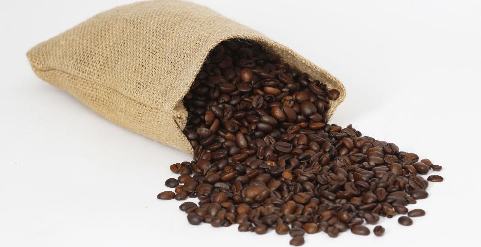 Nachhaltigkeit von Kaffee und warum es immer noch wichtig ist
