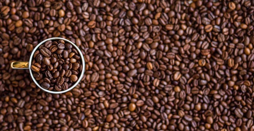 Nachhaltiger Kaffeegenuss – Von Siegeln und Kapseln