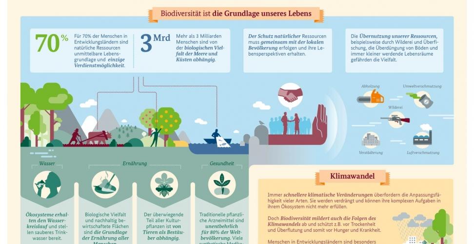 Biodiversität: Ohne Vielfalt keine Entwicklung