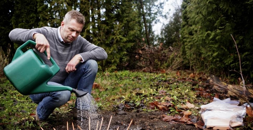 GRÜNE STARTUPS: Pflanzbare Bleistifte erhalten ein neues Leben