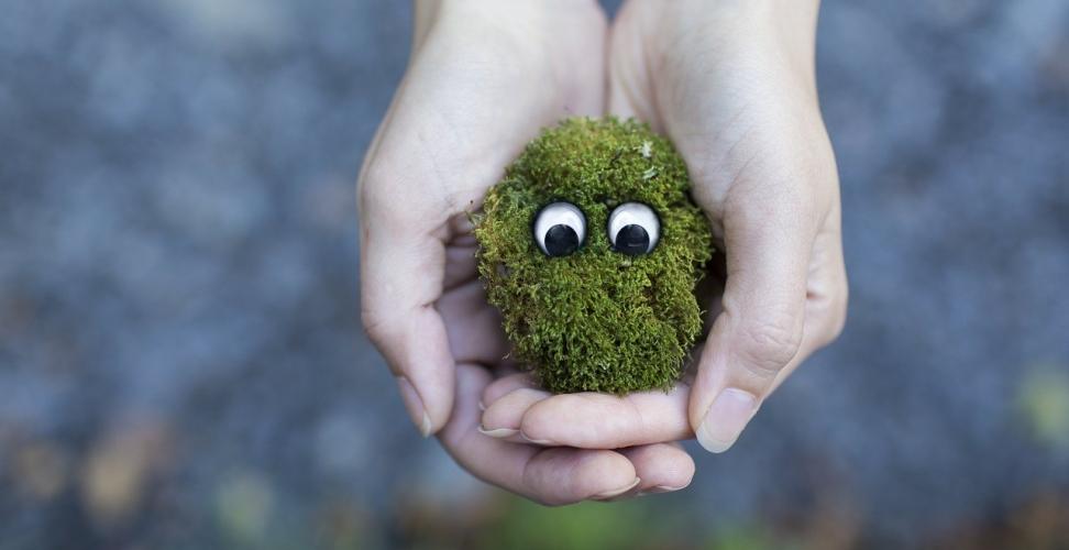 Re-Commerce vereint Konsum und Nachhaltigkeit