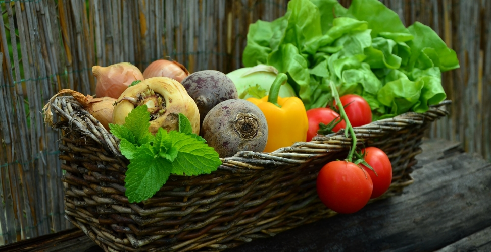 Nahrungsergänzungsmittel, sinnvoll oder überflüssig?