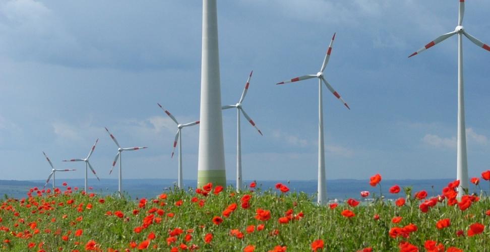Windenergie-Branche weiter auf Wachstumskurs